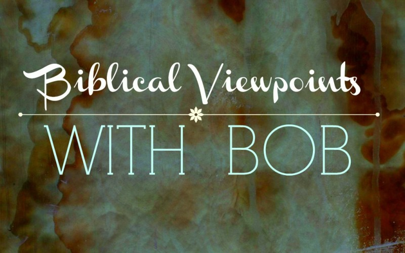 Biblical Viewpoints with Bob – The Owner's View and The Manager's View