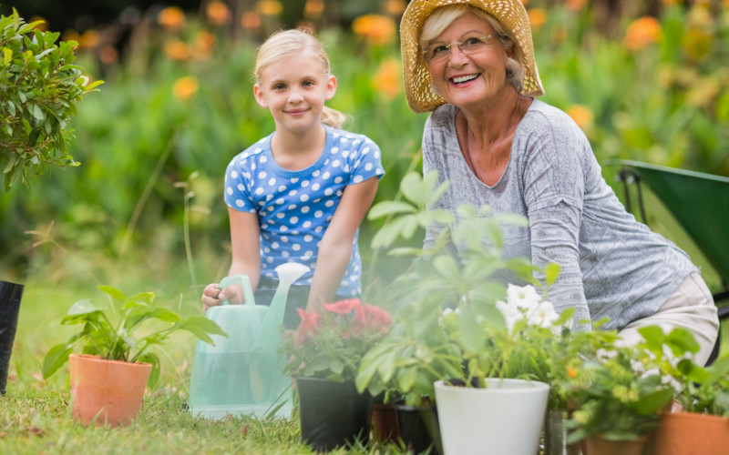 Do you need a Wealth-Inheritance-Legacy Plan?