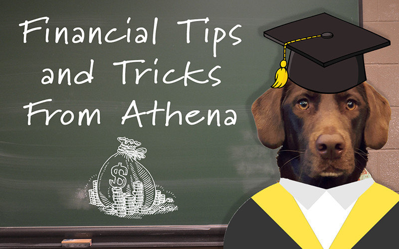 Athena's Tips & Tidbits – Planned Giving