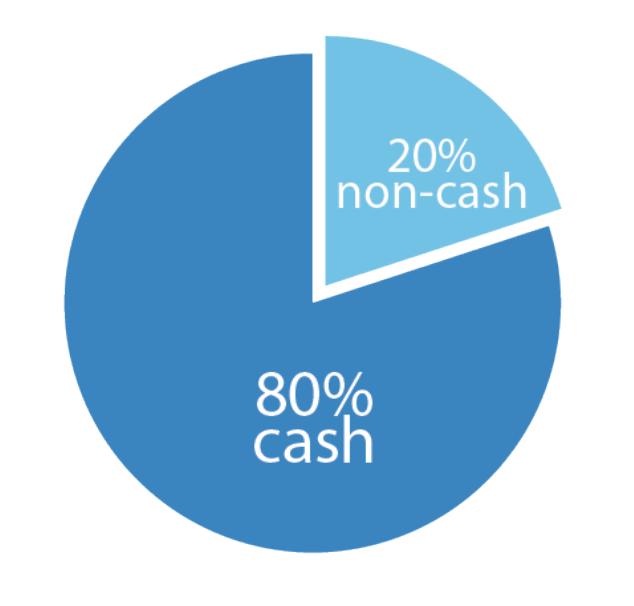 20% non cash assets and 80% cash assets pie chart